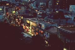 cat street (Shintaro Masatomi) Tags: