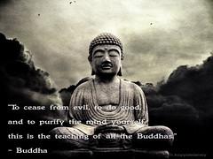 Buddha Quote 73 (h.koppdelaney) Tags: wallpaper art freedom peace image quote good buddha joy picture evil happiness monk buddhism zen luck meditation teaching spirituality wisdom stillness mahayana hinayana buddha koppdelaney buddhismquotes zitate