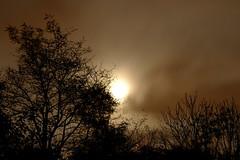 Full Moon - October Night (1) (FHgitarre) Tags: autumn trees oktober moon night mond october nacht branches herbst full ste bume vollmond herbstnacht autumnnight
