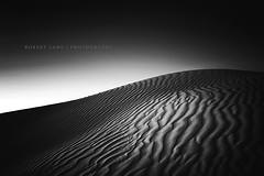 Sand dunes, black and white - Australia (Robert Lang Photography) Tags: blackandwhite nature landscape sand dune australia nopeople clean sa simple sanddune tones southaustralia streakybay eyrepeninsula