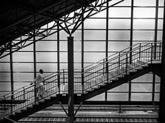 upwards (streetwrk.com) Tags: street people bw monochrome blackwhite track tracks streetphotography stranger trainstation streetogs streetwrk