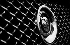 Jaguar XJ (TP Photographer) Tags: show camera bw white house black slr classic monochrome car contrast cat canon silver reflections circle logo lens landscape photography eos design power mesh d air automotive rover front chrome photograph badge metalwork land vehicle jag british jaguar grille 500 dslr orientation radiator branding rotary polished aluminium liter 2012 litre intake wilton badging xj 500d 2011 tpphotographydesign