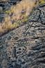 Ancient Graffiti (RoamingTogether) Tags: hawaii lava nikon bigisland hawaiivolcanoesnationalpark tamron hdr puuloa puuloapetroglyphs nikond700 283003563