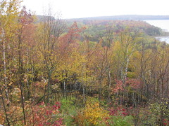 Door County Foliage