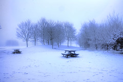 Winter in Forfar (**Joannie of Arc**) Tags: park trees winter white snow cold ice fog scotland frozen angus snowy scenic freezing peaceful tables forfar benches bushes picnictables parkland