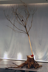 Untitled     Wood, Ax, Mixed media.     Installation.      150 X 150 X 300 (cm)  59 X 59 X 118 (inch)