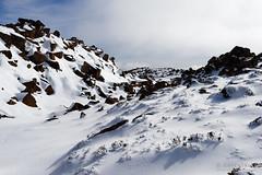 20160807-28-Rodway Range bouder Field completely filled with snow (Roger T Wong) Tags: australia mtfield mtfieldnationalpark np nationalpark rodwayrange sel1635z sony1635 sonya7ii sonyalpha7ii sonyfe1635mmf4zaosscarlzeissvariotessart sonyilce7m2 tasmania bushwalk hike outdoors snow tramp trek walk winter