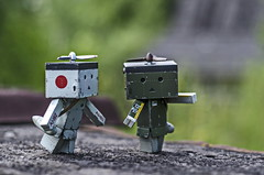 My country house (Suliveyn) Tags: fighter zero danbo danboard