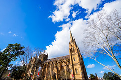 DSC01297 (Damir Govorcin Photography) Tags: st marys cathedral sydney catholic church australian history building architecture zeiss 1635mm trees clouds sony a7ii