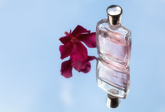 In the mirror  HMM (Irina1010) Tags: macromondays inthemirror mirror reflections flower oleander red bottle perfume lancome miracle pink sky bluesky canon standing photography irins