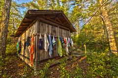 20160720-IMG_1786-Edit.jpg (Gary Phillips2010) Tags: pinewoods