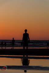 sunset silouette-7614 (gov_phil) Tags: clair obscur sunset