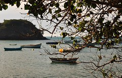 como um sonho... (Ruby Ferreira ) Tags: branches dof boats barcos sea ripples oceanoatlntico atlanticocean galhos flr flower montanha