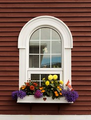 Window (Karen_Chappell) Tags: window flowerbox flowers stjohns architecture red white wood wooden paint painted house