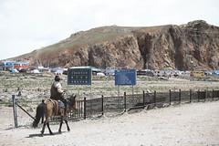 IMG_1160 (chungkwan) Tags: namco tibet religion buddha travel nature world life canon sigma