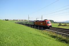 1116 103 mit IC 692 bei Seekirchen/Wallersee (2894) (oebbtrainspotting) Tags: westbahn 1116 rh1116 ricwagen bb bregenz salzburg salzburghbf seekirchenamwallersee wallersee vie viennainternationalairport wien intercity 692 ic692