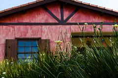 House (rodengelet) Tags: house d7000 so roque donpato brasilemimagens brasilbrazil arquitetura sigma fotografosbrasileiros fotografemelhor flickr flickrglobal rodrigovasconcellossilvarvs natureza nature