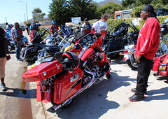 Lined Up On Highway 1 And Looking Great - The Motorcycle Display at Neptune's Net (Trail Trekker) Tags: motorcycles harleydavidson vintagemotorcycles highway1 southerncaliforniacoast venturacountycalifornia neptunesnet