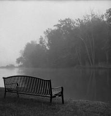Morning Fog at the Pond (bclook) Tags: pentaconsix p6 biometar2880 fomapan400 fomapan selfdeveloped istillshootfilm filmisnotdead bwfp blackwhite monochrome schwarzweiss noiretblanc