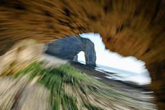 volando tra le falesie (ceszij) Tags: france francia normandie normandia etretat scogliere falesie acantilado gabbiano seagull oceanoatlantico atlanticocean rock