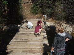 Bridge building with Ski Butlers