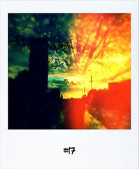"#DailyPolaroid of 15-10-12 #17 • <a style=""font-size:0.8em;"" href=""http://www.flickr.com/photos/47939785@N05/8100679107/"" target=""_blank"">View on Flickr</a>"