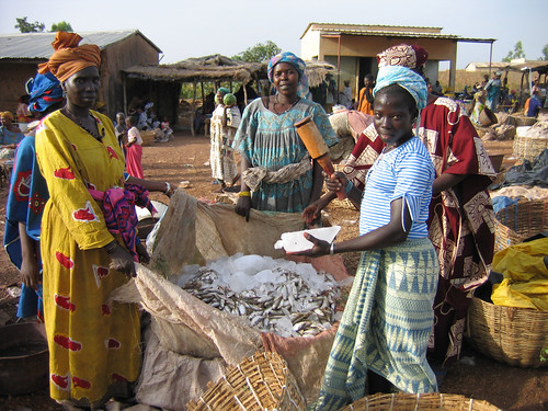 Fish traders in Mali. Photo by Edward H. Allison, 2004