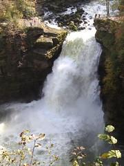 Saut du Doubs (Iris_14) Tags: autumn nature automne waterfall wasserfall rivière reflet cascade reflexion chute neuchâtel lesbrenets doubs sautdudoubs