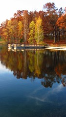 (Jay~Lynn) Tags: wood autumn trees light red orange white lake green fall nature water colors leaves yellow reflections bench outdoors woods october path michigan hills yp