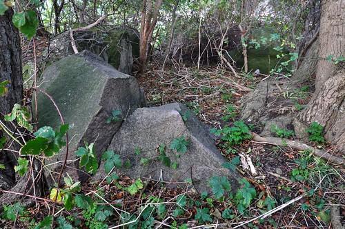 Großsteingrab Preetz 1