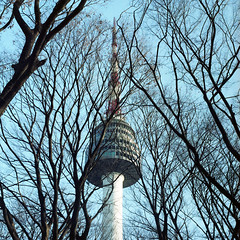 (*YIP*) Tags: city blue trees sky tower 120 6x6 film mediumformat square photography branch outdoor bare branches capital landmark seoul epson southkorea namsan kiev60 communicationstower namsantower iso160 colorimage v500 nseoultower epsonv500 yipchoonhong