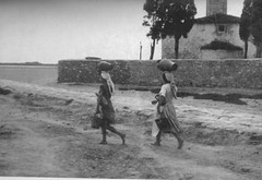 Pr n kroin e ujit. N afrsi t laguns s Narts, 1958. A la recherche d'eau. Etang de Narta, Albanie, 1958.  Looking for water.  Narta pond, Vlora area, Albania, 1958. (Only Tradition) Tags: al albania vlora albanien shqiperi shqiperia albanija albanie shqipri ppsh shqipria valona arnavutluk hcpa avlona vlor    rpsh         albnija   vlon