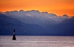 Hurricane Ridge (MattFergusonPhotography) Tags: ocean sunset canada mountains washington victoria vancouverisland breakwater ogdenpoint canonrebelt2i