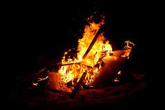Fire in your backyard (Ludvig_Auclair) Tags: wood orange night canon fire photo still nice backyard burn 5d 40mm f28 5dc 5dclassic