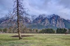 Mt Si (Andrew E. Larsen) Tags: papalars andrewlarsenphotography