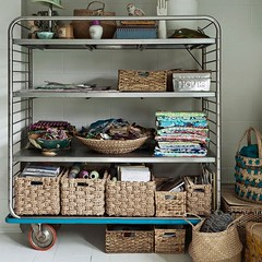Trolley Storage (Heath & the B.L.T. boys) Tags: basket organize casters