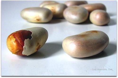 jackfruit seeds (chakka kuru)