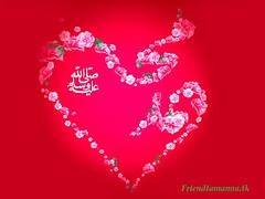 (amjadhussain605@ymail.com) Tags: mashaallah