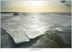 Kuiend ijs (1D134544) (nandOOnline) Tags: winter berg nederland natuur vuurtoren marken landschap noordholland ijselmeer ijs vorst markermeer vriezen ijsschotsen kruiendijs dooien paardvanmarken