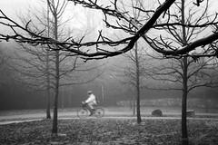 Today in Vancouver: Dedication ([Rikki] Julius Reque) Tags: park travel winter blackandwhite canada wet rain bike fog vancouver bc britishcolumbia commute stanleypark canon50d juliusrequecom