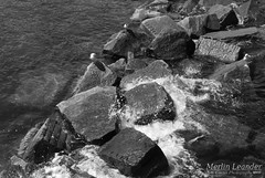 DSC_0813 (Tiny Cactus Photography) Tags: ruegen island summer nature sea germay