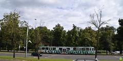 Lechia Gdask tram (petrOlly) Tags: europe europa poland polska polen gdansk gdask pomorze trjmiasto tricity tricityarea city
