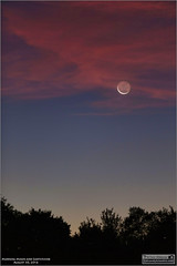 Morning Moon and Earthshine  August 30, 2016 (Tom Wildoner) Tags: tomwildoner leisurelyscientistcom leisurelyscientist crescent moon earthglow earthshine clouds morning trees hickoryrunstatepark state park pennsylvania pa astronomy astrophotography astronomer solarsystem canon canon6d tripod dark red blue stars space science nature outdoors