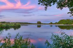Natural Frame (Peter Vestin) Tags: nikondf sigma24mmf14dghsmart siruin3204x siruik30x adobecreativecloudphotography topazlabscompletecollection herrn skattkrr karlstad vrmland sweden vnern nature landscape seascape sunset
