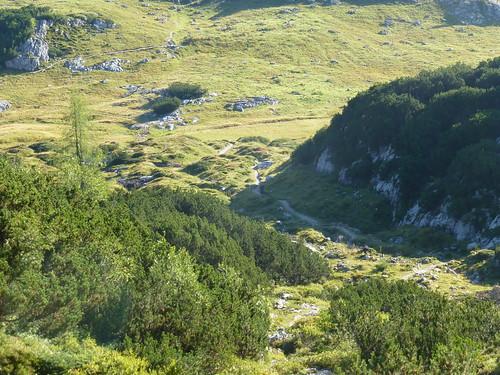 Exkursion Alpen 2016
