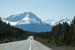 Rockies Road (profstoff) Tags: 2016 icefieldsparkway rockies canada