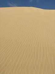 EOLO, ARTISTA (aliciap.clausell) Tags: duna riscodelpaso fuerteventura playa aliciapclausell