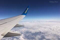 The stunning sky. (Svitlana Clover) Tags: berlin germany europe vacation traveling journey tour ukraine kyiv sky blue gray white clouds flight airplane appleiphone6s height