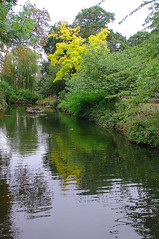 D15605.  Lloyd Park. (Ron Fisher) Tags: water lake pond lloydpark walthamstow e17 london londone17 trees green path pentax pentaxkx tamron tamron18200mm tamronaf18200mmf3563xrdiiildasphericalif park reflections yellow