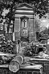 **Père Lachaise** (**klaracolor**) Tags: trees blackandwhite bw paris france tree grave graveyard graf parijs pèrelachaise klaracolor